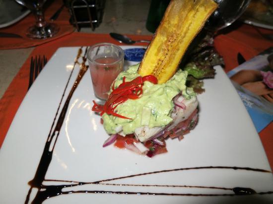 Rio Celeste Hideaway Hotel: ceviche