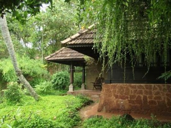 Sarovaram Ayurvedic Backwater Health Centre: Wooden Cottage