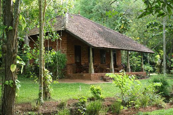 Sarovaram Ayurvedic Backwater Health Centre: Twin Cottage