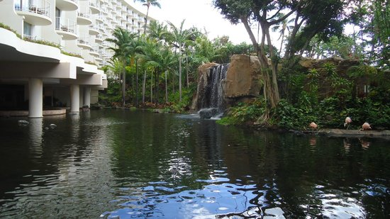 Westin Maui Resort And Spa: hotel grounds