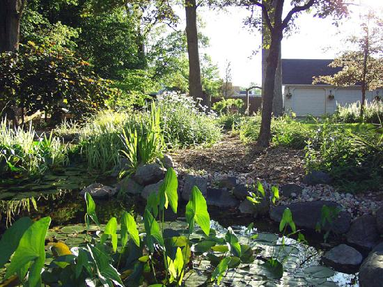 The Rochester Carriage House B&B: Carriage House pond