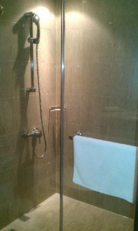 Taipei Fullerton Hotel Fuxing South: shower