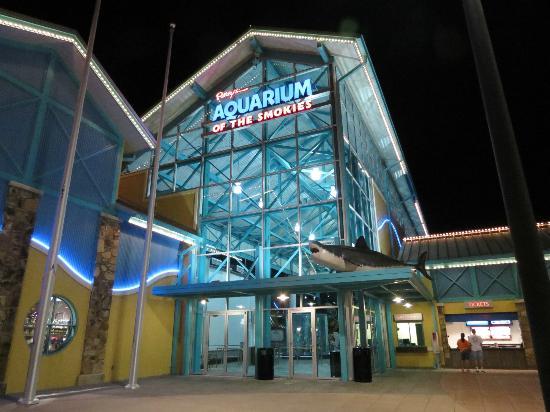 Outside The Aquarium Picture Of Ripley 39 S Aquarium Of The