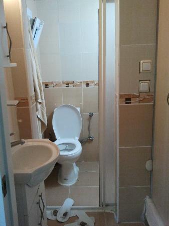Antik Sofia Hotel: midget bathroom