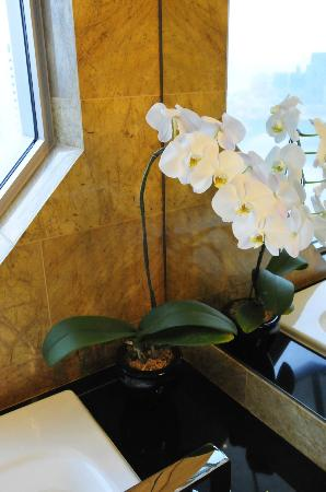 The Ritz-Carlton, Millenia Singapore: Yes, the orchids are real and changed regularly