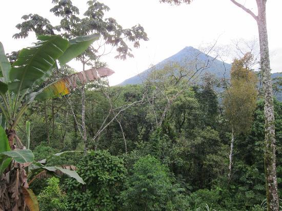 Hotel Lomas del Volcan: vista desde la terraza