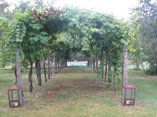 Borgo della Marmotta: in giardino per accede alla piscina.