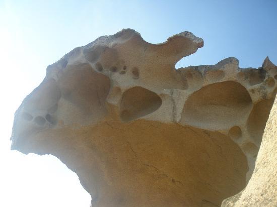 Palau Green Village : la roccia dell'orso a palau