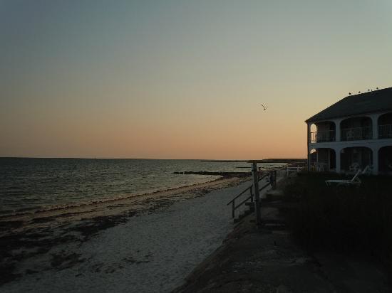 Ocean Mist Beach Hotel & Suites: Beach View