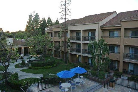 Courtyard Los Angeles LAX/El Segundo: Courtyard