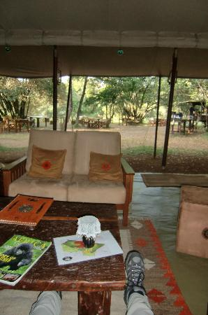 Mara Bush Camp: bar and dinner/lunch area in the back