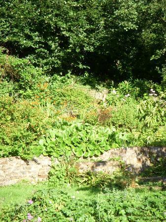 The Bark House: Rock Garden Outside the Inn