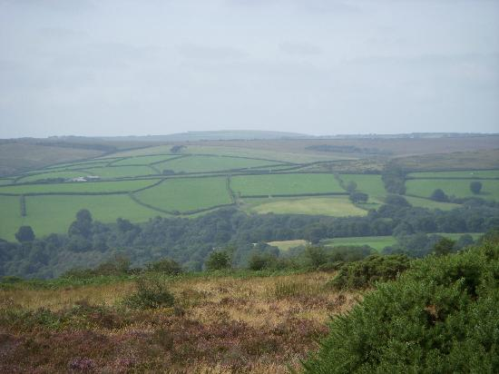 The Bark House: Devon Countryside from Exmoor