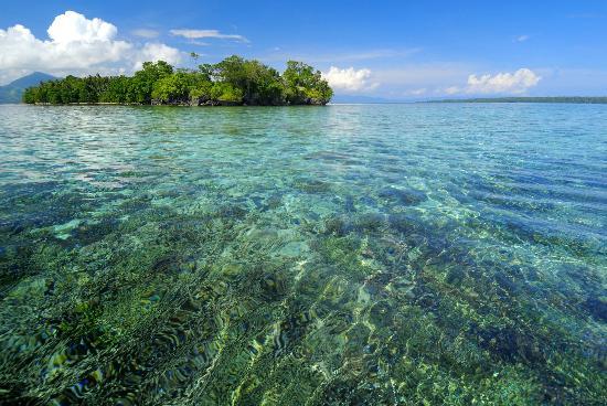 Siladen Resort & Spa: Incredible snorkeling