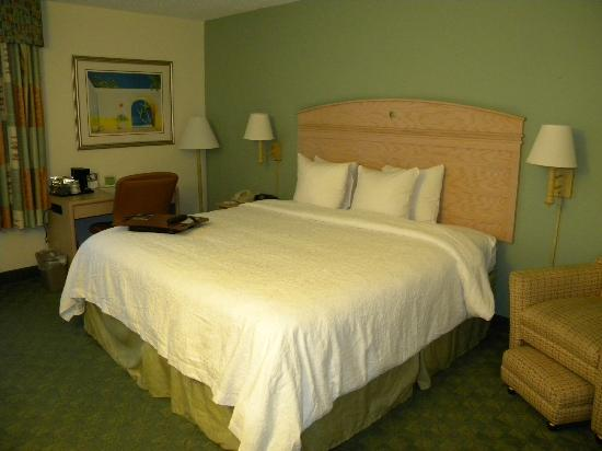 Hampton By Hilton Miami-Coconut Grove/Coral Gables: bedroom