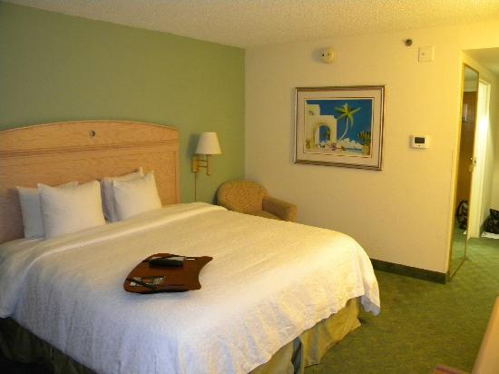 Hampton By Hilton Miami-Coconut Grove/Coral Gables : bedroom