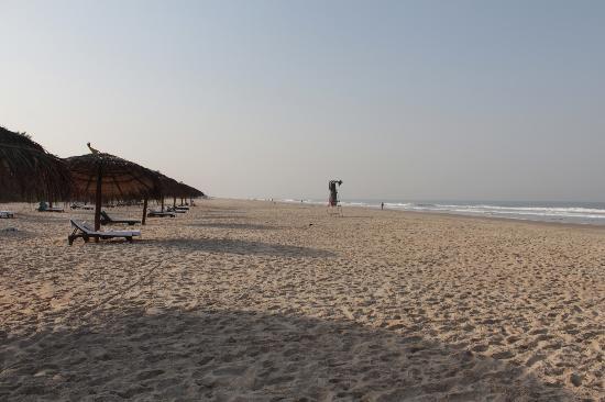 Looking south from Taj Exotica Goa