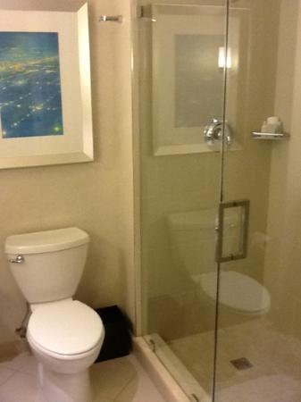 Renaissance Arlington Capital View Hotel: bath room.... very clean