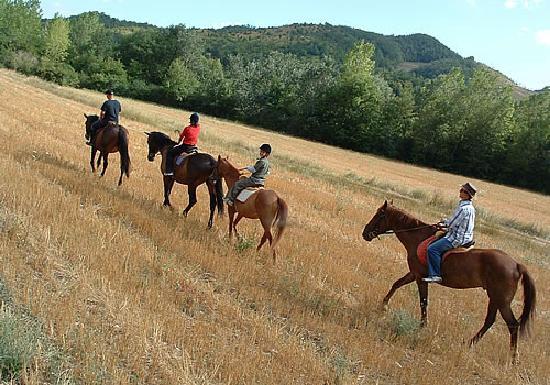 Il Palazzetto: Equitazione