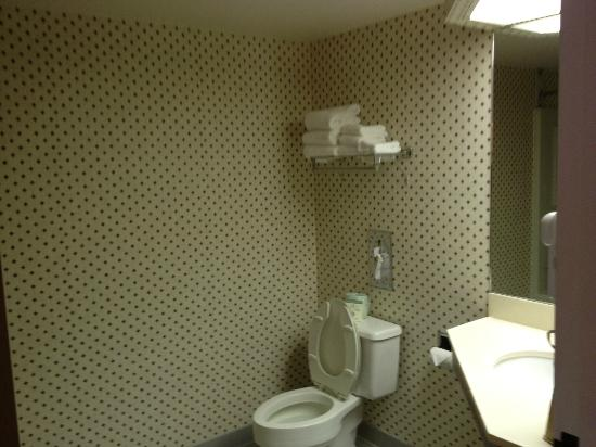 Settle Inn & Suites La Crosse: Bathroom