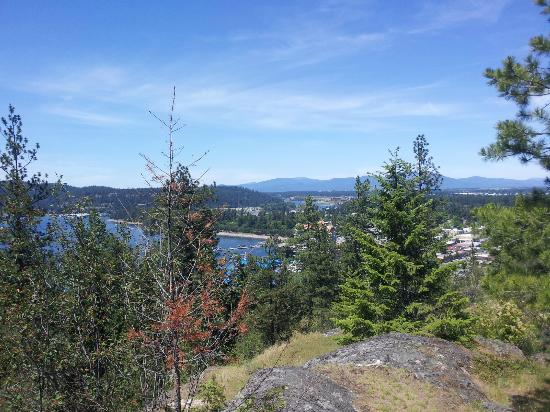 The Coeur d'Alene Resort: View of hotel through the trees on hike up mountain right next to the hotel