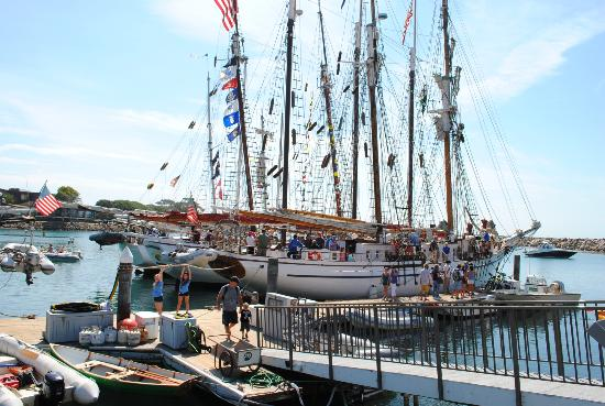 Dana Point, Kaliforniya: Sail Ships at the Festival (Ocean Institute)