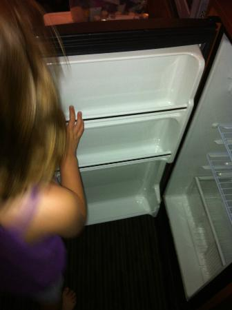 Days Inn Encinitas- Legoland Moonlight Beach: Mini-fridge
