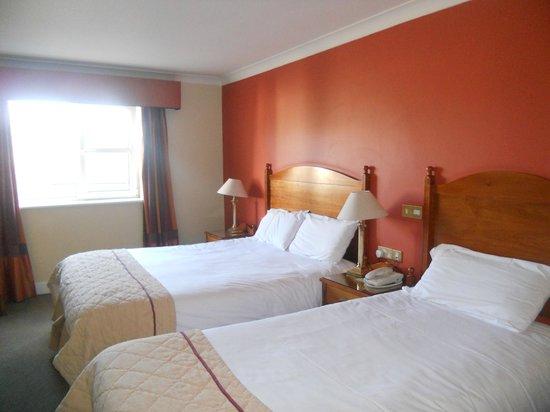 Newgrange Hotel-bild