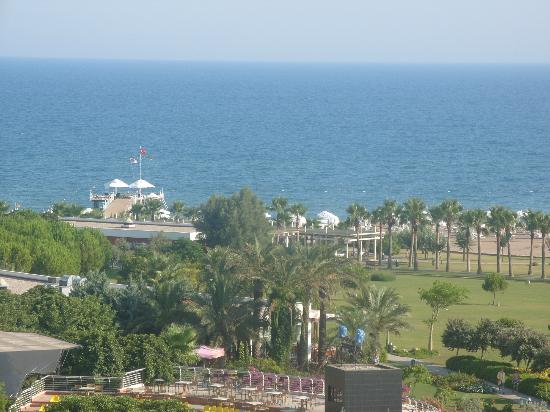 Barut Lara: View from the room