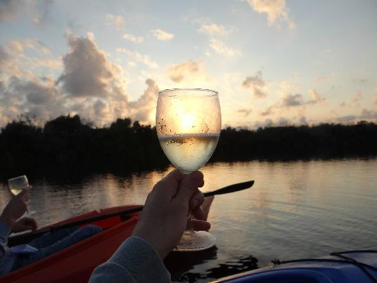 ‪‪Tour the Glades - Private Wildlife Tours‬: Toasting to the sunset‬