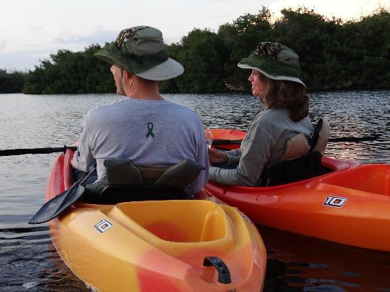 Tour the Glades - Private Wildlife Tours: Anniversary adventure
