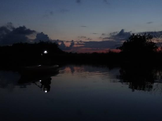 Tour the Glades - Private Wildlife Tours: Wearing a headlamp at dusk