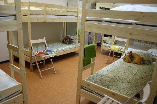 Safari Hostel : dorm