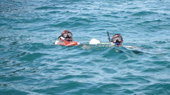 Papagayo Green Bay Day Tours: Snorkling
