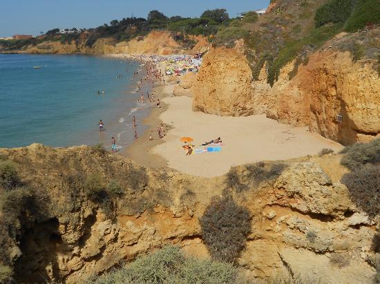 Aparthotel Oceanus : Secluded beach