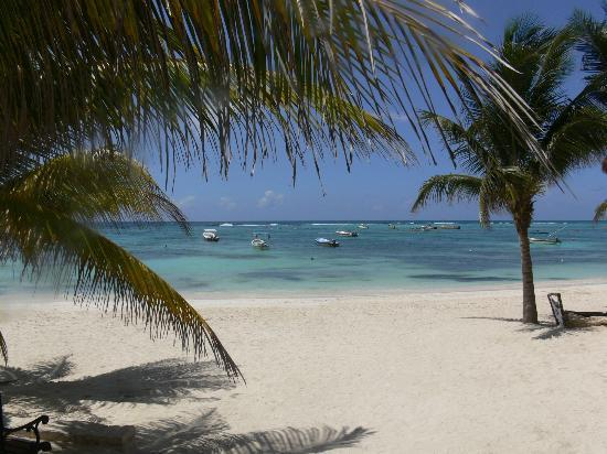 Hotel Akumal Caribe: Our Bay