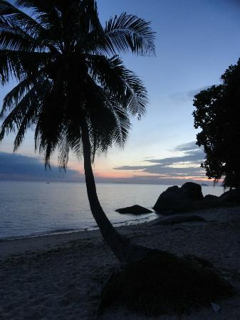 Thong Yang Bungalows : View after sunset