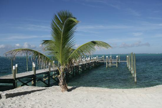 Our Dock Picture Of Firefly Sunset Resort Elbow Cay