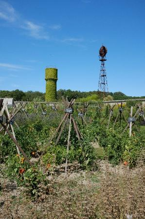 Gardens of the Chateau de la Bourdaisiere: Le potager