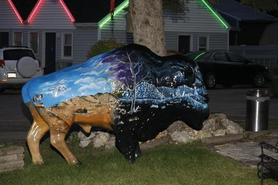 Black Hills Mile Hi Motel: One of the fabulous buffalo statues, this one in front of the motel