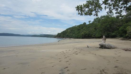 Occidental Papagayo - Adults only: The beach its public