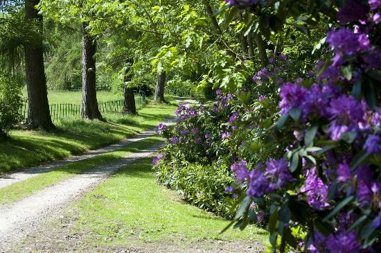 The Old Rectory Bed and Breakfast: The driveway