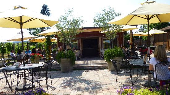 Marchesi Vineyards: A really big close up of the new patio