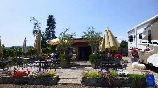Marchesi Vineyards: Relax and join the new/old friends you meet here for wine.