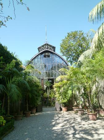 Isola Bella: ingresso della serra