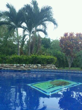 Hato Cristero: desde el bar de la piscina