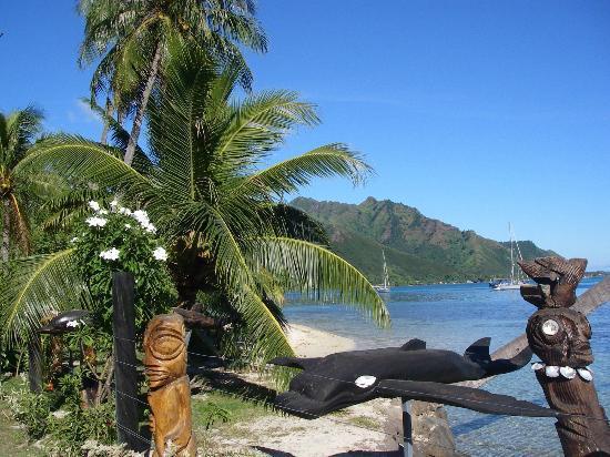 Hilton Moorea Lagoon Resort & Spa: Beautiful Vegetation