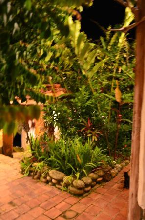 El Carambolo: garden