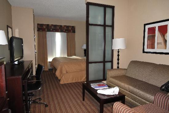Comfort Suites West of the Ashley: Chambre