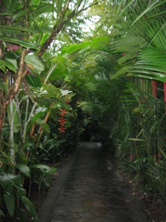 纳亚拉Spa及花园酒店照片